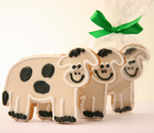 Cow Decorated Cookies